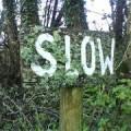 Slow © BPG