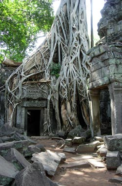 Angkor Watt Photo: © Janet Novak