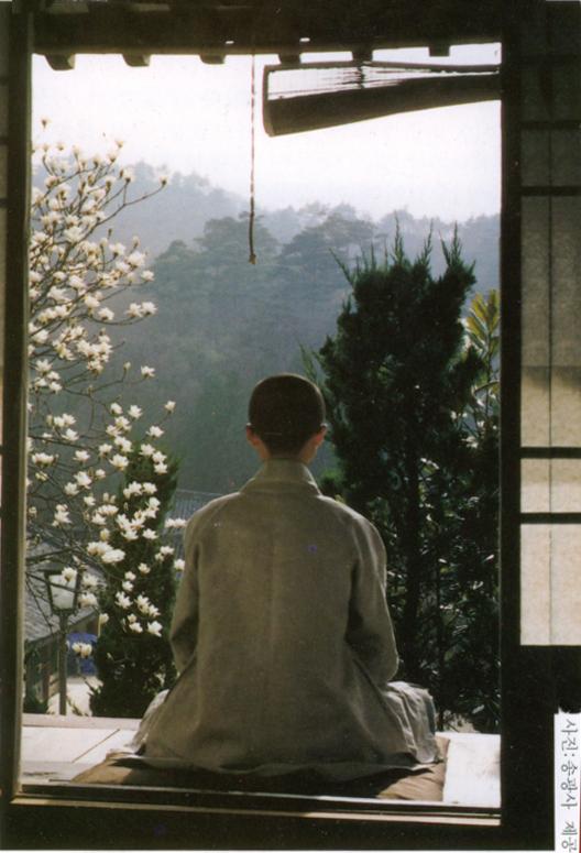 Life in a Korean Monastery, Jisu Sunim (5/5)