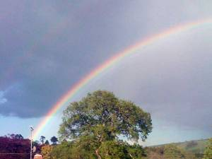 Rainbow over Totnes, England