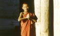 Young Monk. Photo © Lisa Daix