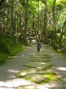 Path to Kozan-ji Photo @KyotoDailyPhoto