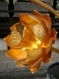 Golden Lotus Flower Photo © @KyotoDailyPhoto