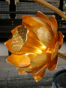 Golden Lotus Flower Photo © @KyotoDailyPhoto