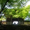 @KyotoDailyPhoto