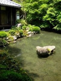 Renge-ji Photo © @KyotoDailyPhoto