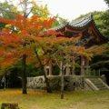 daigo-ji-autumn-300.jpg