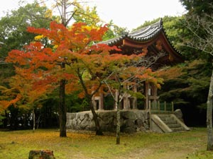 Daigo-ji in Autumn. Bird sings again / bell tolls again... / autumn mountain (鳥鳴て又鐘がなる秋の山) - Kobayashi Issa (小林一茶), written 1805. @KyotoDailyPhoto