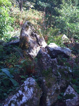Rock garden at Agatha Christie's Greenway House. Photo RSR
