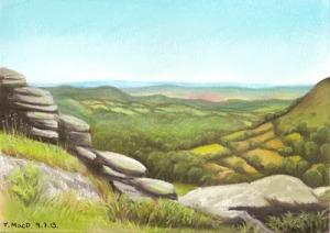 Hound Tor, Dartmoor, Devon. Art © @TessaMacDermot