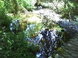 River Dart, Totnes. © RSR