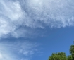 Tree, Sky and Clouds. © RSR